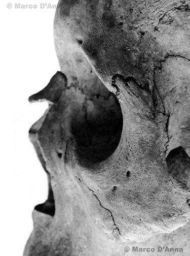 Coglio ossuary, 2007